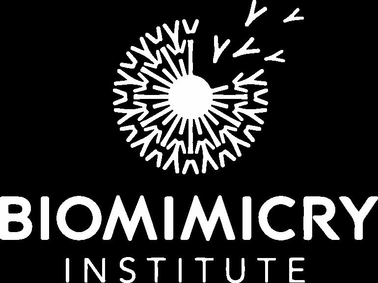 Biomimcry Institute